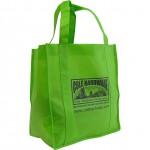 Green Bag-3