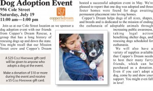 dog-adoption-article