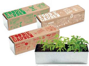 foodie-garden