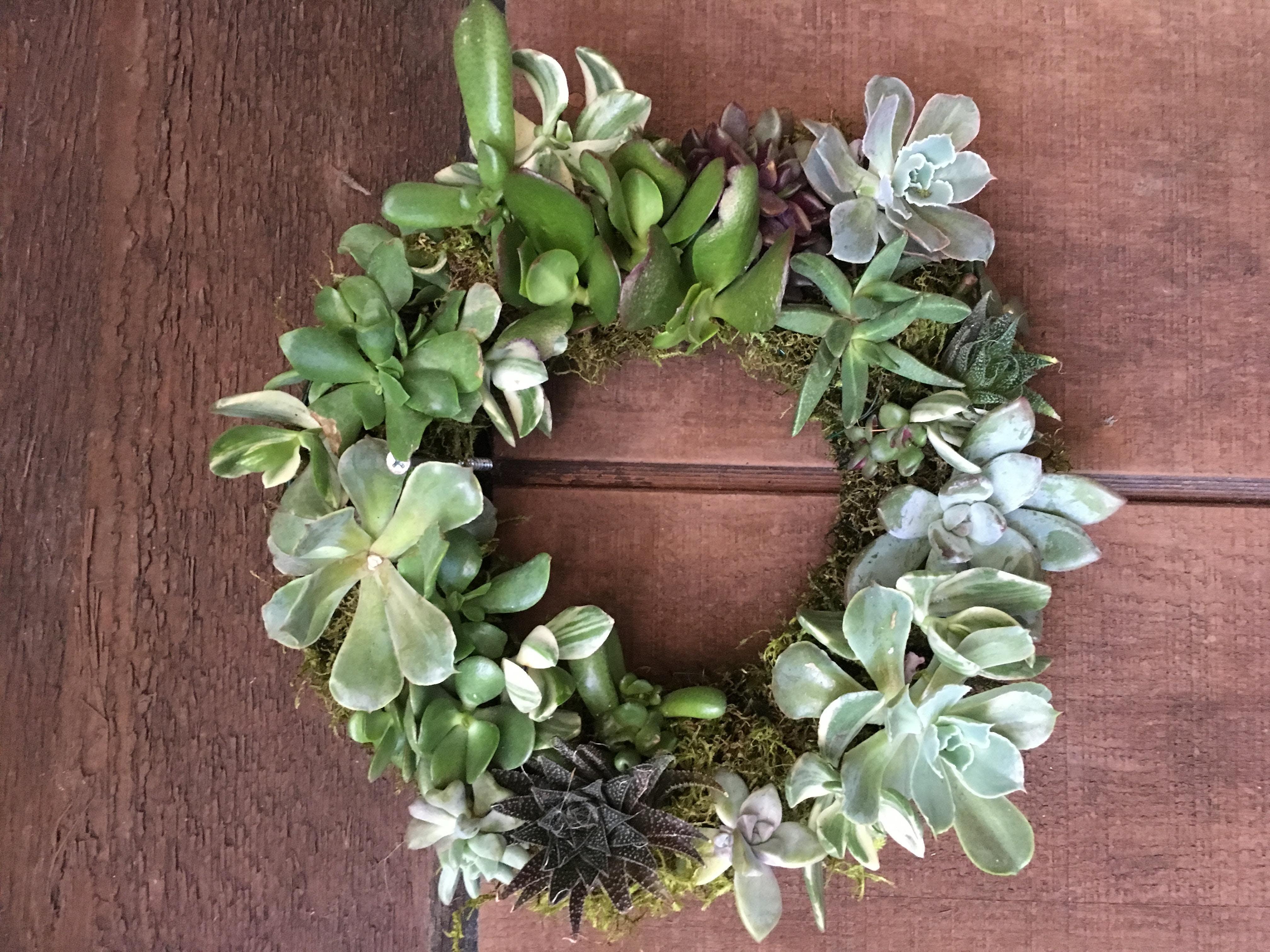 Succulent Wreath Workshop Rockridge Cole Hardware Cole